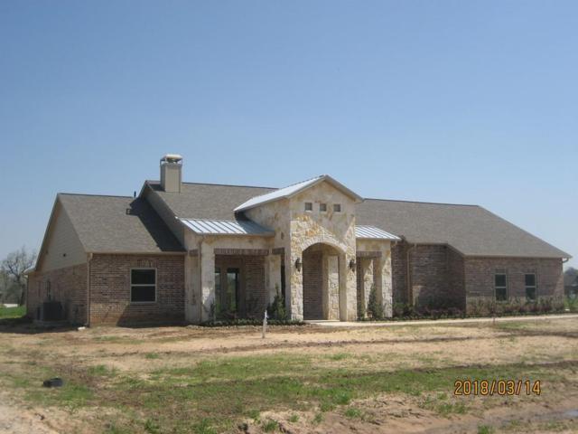 3202 River Ranch South Drive, Rosenberg, TX 77471 (MLS #10140963) :: Texas Home Shop Realty