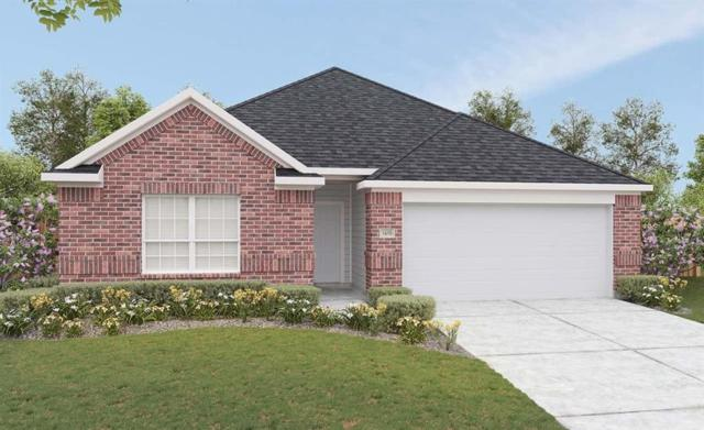 22930 Arcola Manor Court, Katy, TX 77493 (MLS #16527146) :: The SOLD by George Team
