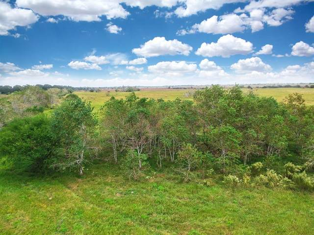 TBD Mieth Rd, Sealy, TX 77474 (MLS #21808237) :: The Bly Team