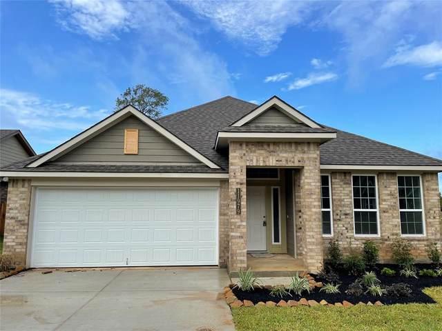 11979 N Sunshine Park Drive, Willis, TX 77318 (MLS #28352780) :: Christy Buck Team