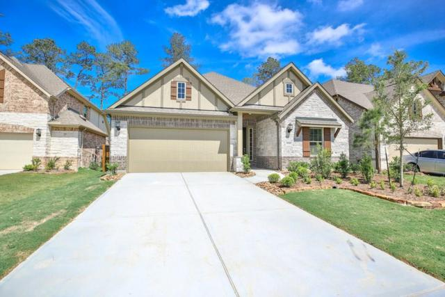 28266 Wooded Mist Drive, Spring, TX 77386 (MLS #29412829) :: Giorgi Real Estate Group