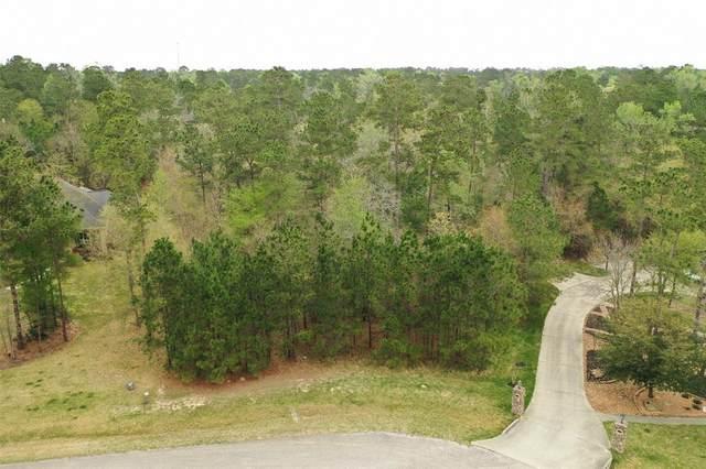 28763 Wood Song Trail, Magnolia, TX 77355 (MLS #29896620) :: Giorgi Real Estate Group