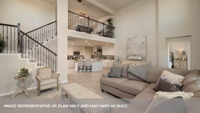 3420 Cambridge Falls Drive, Fresno, TX 77545 (MLS #32849220) :: Ellison Real Estate Team
