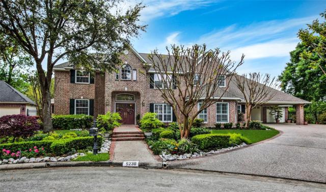 5230 Chambler Court, Houston, TX 77069 (MLS #32874664) :: Texas Home Shop Realty