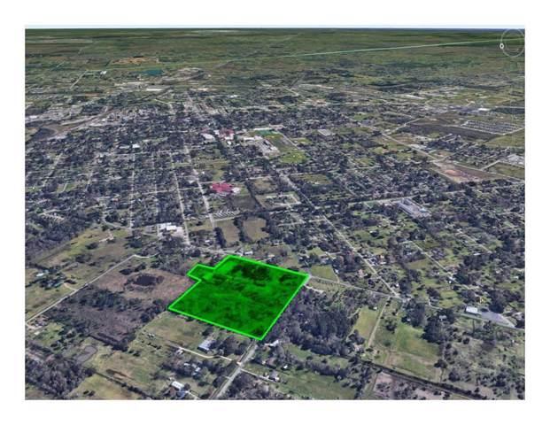 1504 County Road 179 Road, Alvin, TX 77511 (MLS #33892234) :: Texas Home Shop Realty