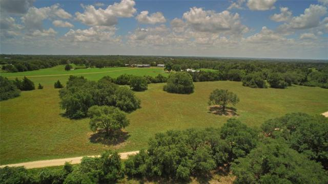 5 Hoppers Lane, Brenham, TX 77833 (MLS #42744089) :: The Jill Smith Team