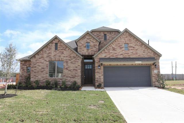 21510 Safrano, Tomball, TX 77377 (MLS #45213528) :: Fairwater Westmont Real Estate