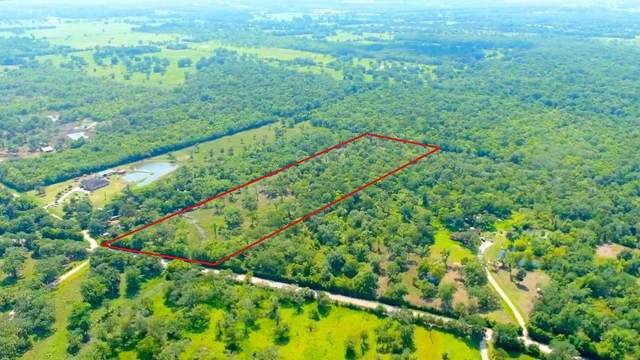 19288 County Road 319, Brazoria, TX 77422 (MLS #45292486) :: The Property Guys