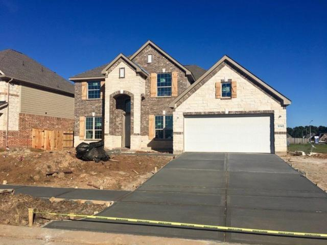 21510 Albertine Drive, Tomball, TX 77377 (MLS #45442020) :: Connect Realty
