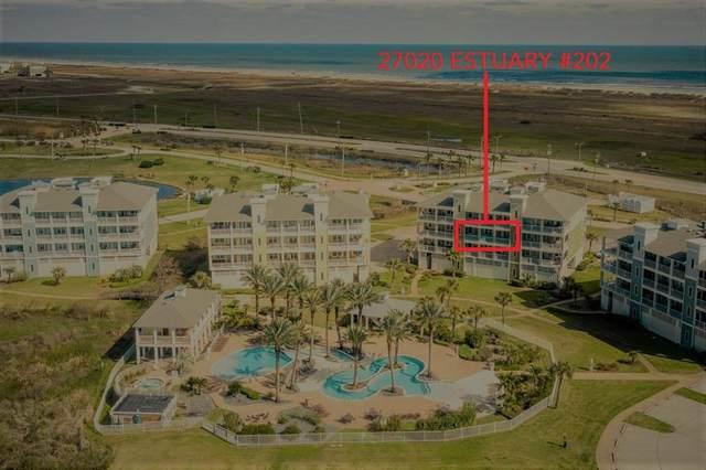 27020 Estuary Drive #202, Galveston, TX 77554 (MLS #47419946) :: The Heyl Group at Keller Williams