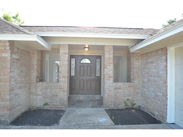 10638 Bob White Drive, Houston, TX 77096 (MLS #48607473) :: Texas Home Shop Realty