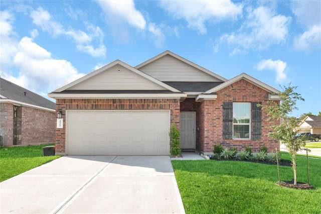 18219 Elgin Studs Court, New Caney, TX 77357 (MLS #50029923) :: The SOLD by George Team