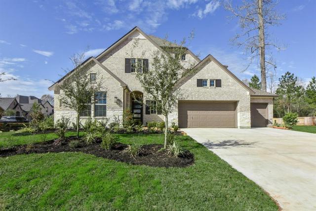 101 Dingo Run Court, Montgomery, TX 77316 (MLS #55206042) :: Texas Home Shop Realty