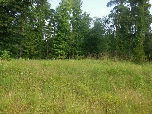 TBD 10 Harrell Cemetery, Coldspring, TX 77331 (MLS #58000994) :: Giorgi Real Estate Group