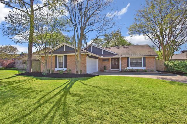 13023 Thatcher Drive, Houston, TX 77077 (MLS #61050794) :: Magnolia Realty