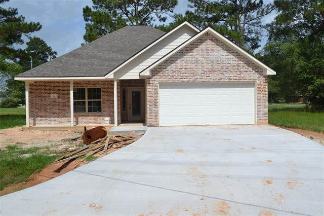 34 Shallow Springs, Trinity, TX 75862 (MLS #64547696) :: The Freund Group