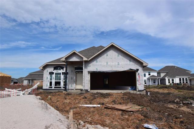 2325 Thunderbolt Peak Drive, Rosharon, TX 77583 (MLS #65425227) :: Connect Realty