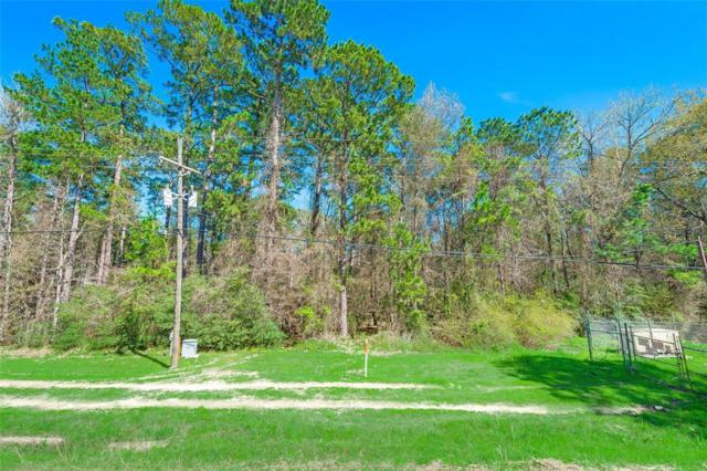 SECTION 4 BLK 1 LOT  Parkview Drive, Onalaska, TX 77360 (MLS #65860184) :: Texas Home Shop Realty