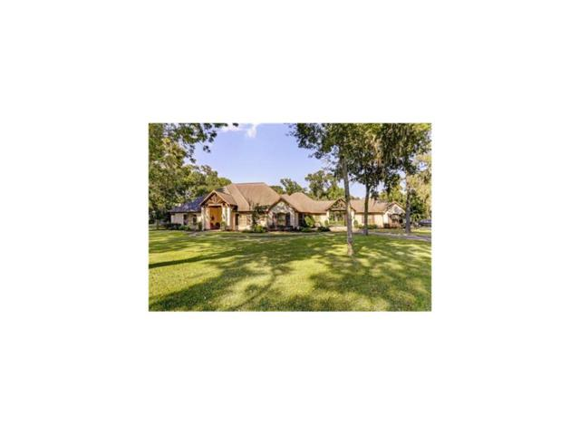 3202 River Forest Drive, Richmond, TX 77406 (MLS #76106445) :: The SOLD by George Team