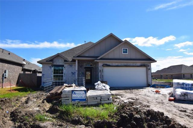 241 Dale Ridge Lane, Dickinson, TX 77539 (MLS #78673966) :: Connect Realty