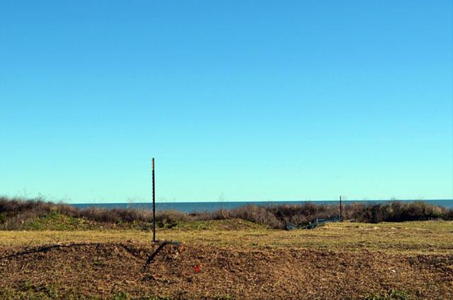 Lot 5 San Luis Pass Road, Galveston, TX 77554 (MLS #81671082) :: The SOLD by George Team