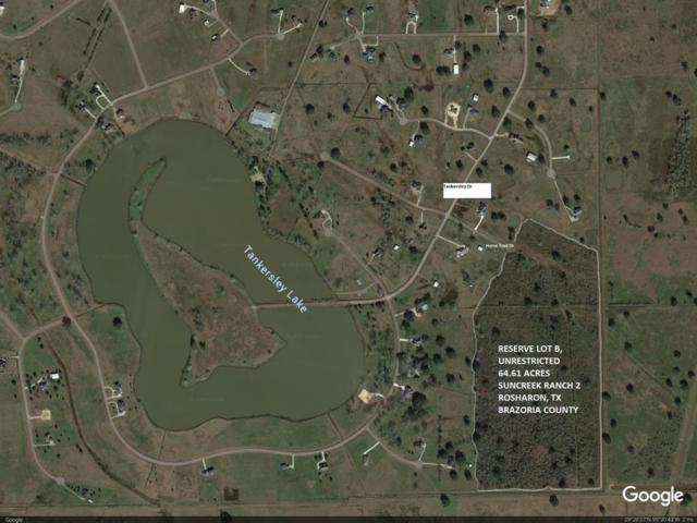 0000 W Horse Trail Drive, Rosharon, TX 77583 (MLS #83921467) :: Giorgi Real Estate Group