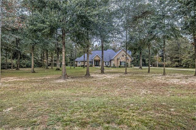 9065 Water Buck Lane, Conroe, TX 77303 (MLS #84107192) :: Texas Home Shop Realty