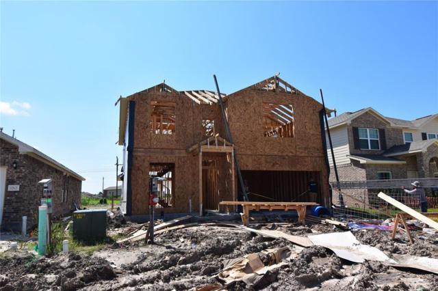 12625 South Shore Drive, Texas City, TX 77591 (MLS #86295753) :: Fairwater Westmont Real Estate