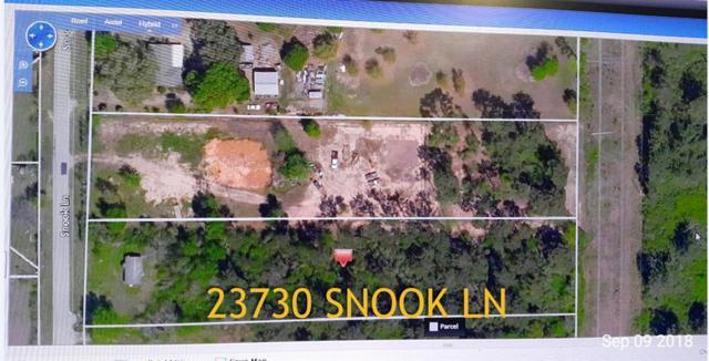 23730 Snook, Tomball, TX 77375 (MLS #93352419) :: Ellison Real Estate Team