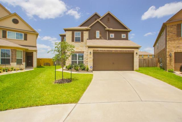 10618 Blithe Oak Court, Tomball, TX 77375 (MLS #96612380) :: Grayson-Patton Team