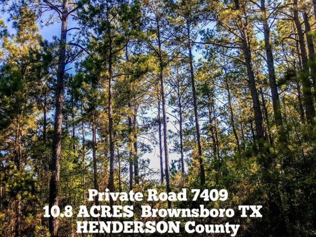 10.8-ac Pvt Rd 7409 - Off County Road 3406, Brownsboro, TX 75756 (MLS #977243) :: Texas Home Shop Realty