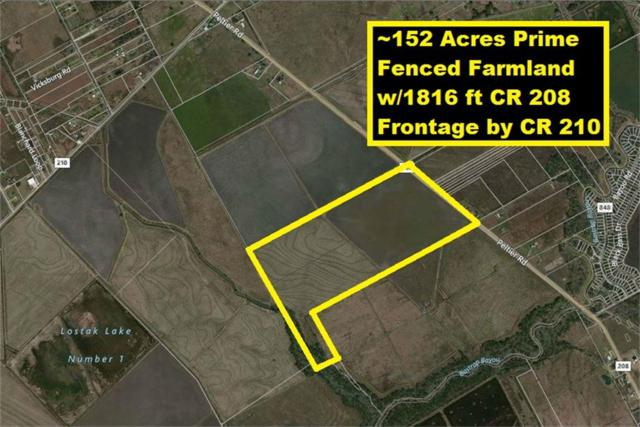 000000 County Road 208, Danbury, TX 77534 (MLS #98652814) :: Connect Realty