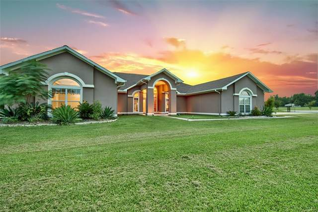 15650 Highway 6, Navasota, TX 77868 (MLS #19181766) :: Connell Team with Better Homes and Gardens, Gary Greene