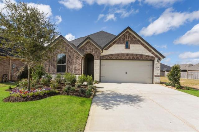 2114 Great Egret Bend, Fulshear, TX 77423 (MLS #23924296) :: Connect Realty