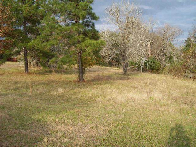 TBD Scenic Woods, Point Blank, TX 77364 (MLS #30090364) :: Magnolia Realty