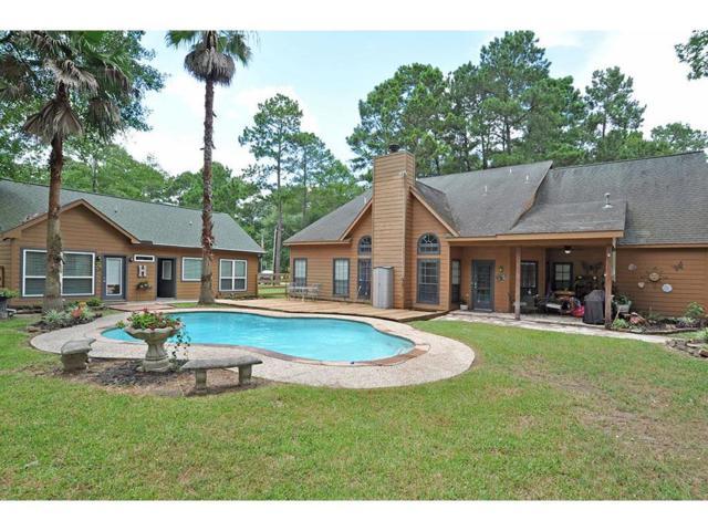 29038 Lake Houston Lane, Huffman, TX 77336 (MLS #43411344) :: Giorgi Real Estate Group