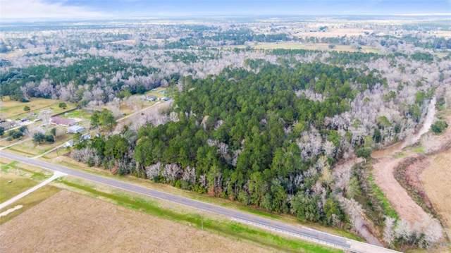 0 Fm 1663, Hankamer, TX 77560 (MLS #5141375) :: Ellison Real Estate Team