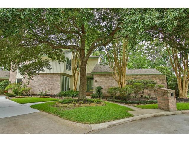 4802 River Hill Drive, Houston, TX 77345 (MLS #53844907) :: Giorgi Real Estate Group