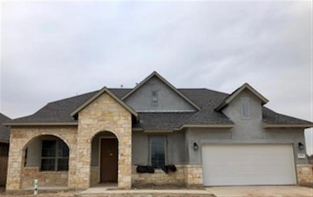 21703 Albertine Drive, Tomball, TX 77377 (MLS #5582238) :: Christy Buck Team