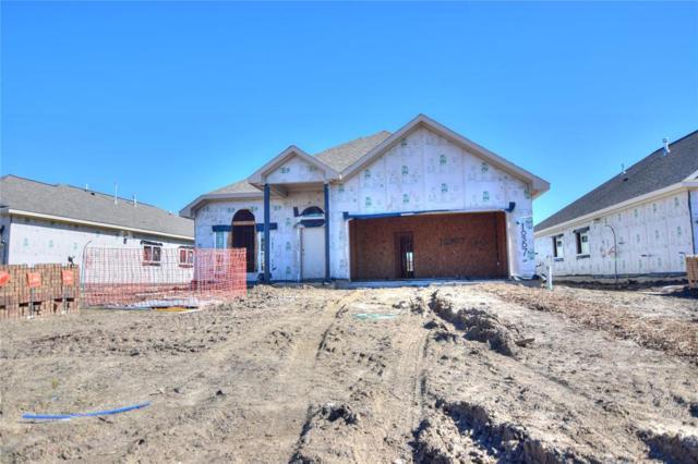 10307 Ritter Run Drive, Rosharon, TX 77583 (MLS #57271523) :: Texas Home Shop Realty