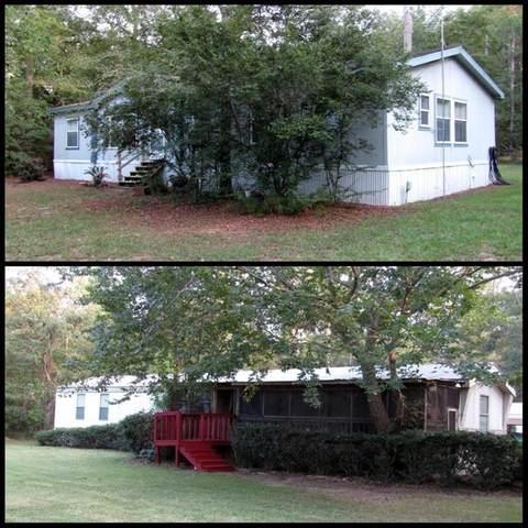 25450 Brushy Creek Drive, Hockley, TX 77447 (MLS #79102176) :: Rachel Lee Realtor