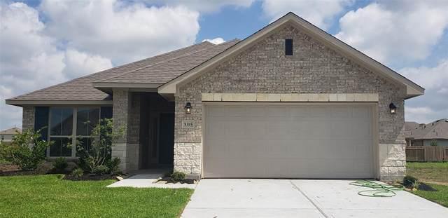 5315 New Iberia Lane, Dickinson, TX 77539 (MLS #83529373) :: Rose Above Realty