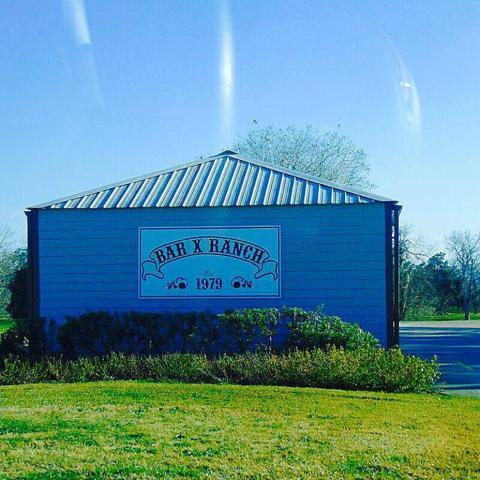 39 Brahman Trail, Angleton, TX 77515 (MLS #92518944) :: The Freund Group