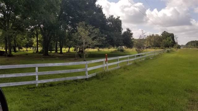20131 Fm 1774 Highway, Plantersville, TX 77363 (MLS #93164592) :: The Jennifer Wauhob Team