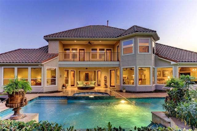 6423 Ivy Falls, Missouri City, TX 77459 (MLS #93798546) :: Texas Home Shop Realty