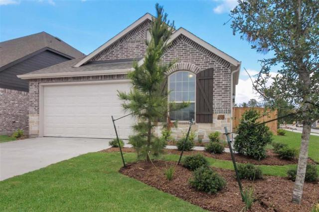 16302 Little Pine Creek, Humble, TX 77346 (MLS #95629265) :: The Bly Team