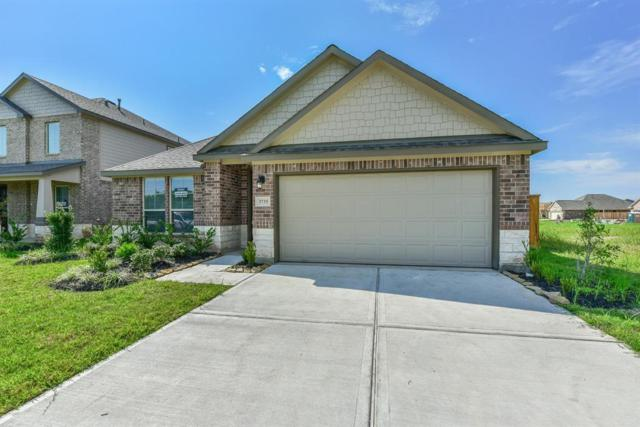 3735 Siderno, Missouri City, TX 77459 (MLS #97412647) :: Connect Realty