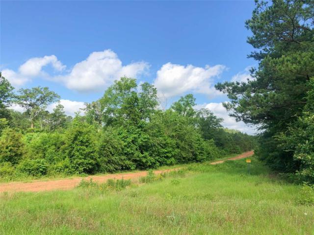 0 Beaver Bend Road, Gilmer, TX 75645 (MLS #9911251) :: Ellison Real Estate Team