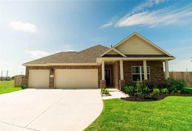 307 Vineyard Court, Alvin, TX 77511 (MLS #14221311) :: Texas Home Shop Realty