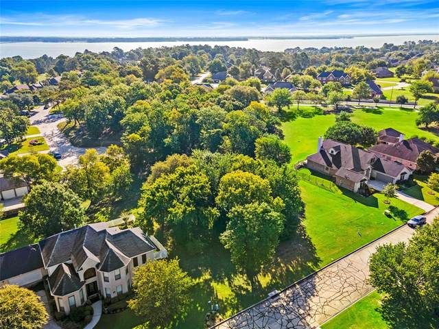 18 Hillsborough Drive E, Montgomery, TX 77356 (MLS #17400919) :: Green Residential